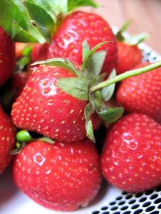Scrawberry